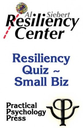 Resiliency Quiz Usage - Small Biz